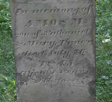 TRUEX, AMOS M. - Morrow County, Ohio | AMOS M. TRUEX - Ohio Gravestone Photos