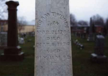 PEASE TWINING, LOVEY - Morrow County, Ohio | LOVEY PEASE TWINING - Ohio Gravestone Photos