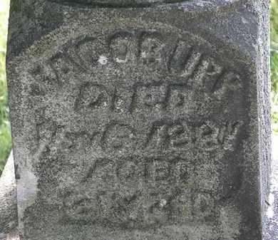 UPP, JACOB - Morrow County, Ohio | JACOB UPP - Ohio Gravestone Photos