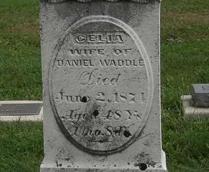 WADDLE, CELIA - Morrow County, Ohio | CELIA WADDLE - Ohio Gravestone Photos