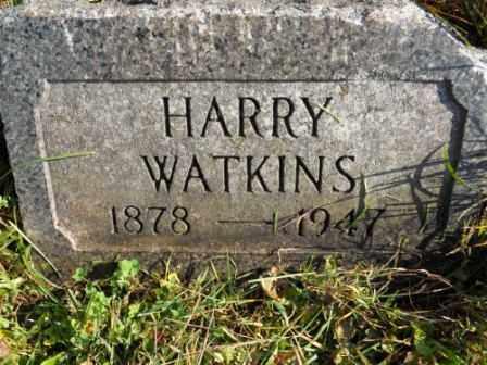 WATKINS, HARRY - Morrow County, Ohio | HARRY WATKINS - Ohio Gravestone Photos