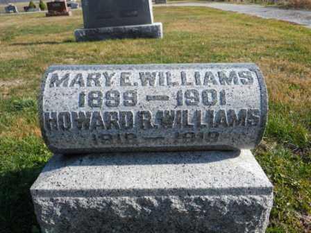 WILLIAMS, MARY E - Morrow County, Ohio | MARY E WILLIAMS - Ohio Gravestone Photos