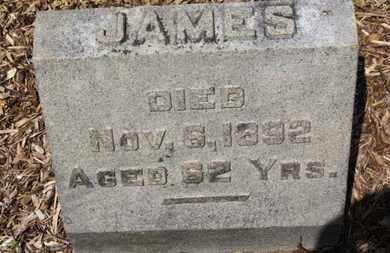 WILLIAMSON, JAMES - Morrow County, Ohio | JAMES WILLIAMSON - Ohio Gravestone Photos