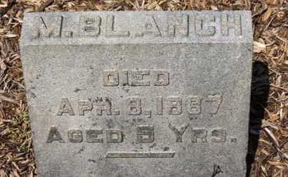 WILLIAMSON, M. BLANCH - Morrow County, Ohio | M. BLANCH WILLIAMSON - Ohio Gravestone Photos