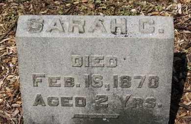 WILLIAMSON, SARAH C. - Morrow County, Ohio | SARAH C. WILLIAMSON - Ohio Gravestone Photos
