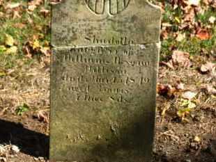 WILLISON, SHIRELLA - Morrow County, Ohio | SHIRELLA WILLISON - Ohio Gravestone Photos