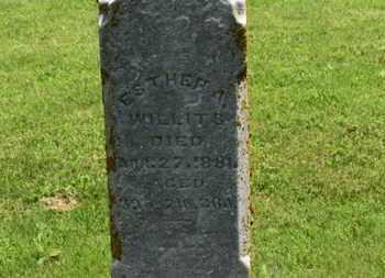 WILLITS, ESTHER A. - Morrow County, Ohio | ESTHER A. WILLITS - Ohio Gravestone Photos