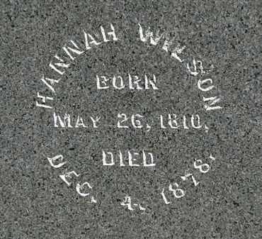 WILSON, HANNAH - Morrow County, Ohio | HANNAH WILSON - Ohio Gravestone Photos