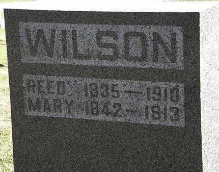 WILSON, REED - Morrow County, Ohio | REED WILSON - Ohio Gravestone Photos