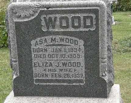 WOOD, ASA M. - Morrow County, Ohio | ASA M. WOOD - Ohio Gravestone Photos