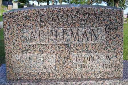 APPLEMAN, GEORGE W. - Muskingum County, Ohio | GEORGE W. APPLEMAN - Ohio Gravestone Photos