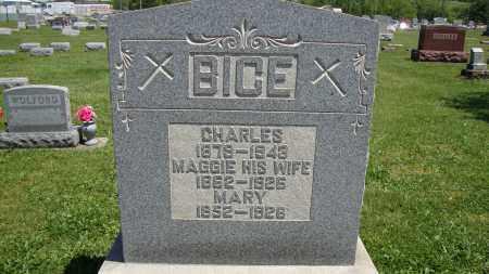 DULL BICE, MARY - Muskingum County, Ohio | MARY DULL BICE - Ohio Gravestone Photos