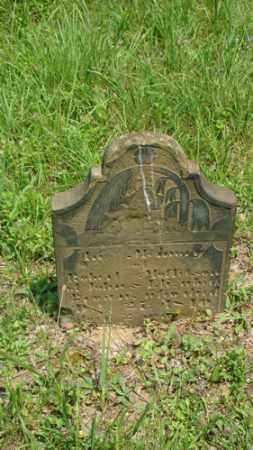 BROWN, ROBERT MOLLER - Muskingum County, Ohio | ROBERT MOLLER BROWN - Ohio Gravestone Photos