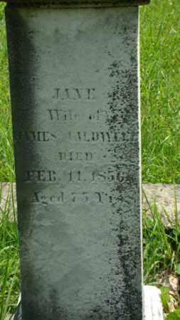 CALDWELL, JANE - Muskingum County, Ohio | JANE CALDWELL - Ohio Gravestone Photos