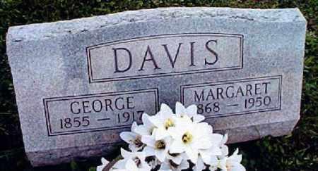 PARKINSON DAVIS, MARGARET LUCINDA - Muskingum County, Ohio | MARGARET LUCINDA PARKINSON DAVIS - Ohio Gravestone Photos