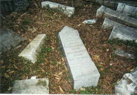 FINK FREDRICK, ROSA - Muskingum County, Ohio | ROSA FINK FREDRICK - Ohio Gravestone Photos