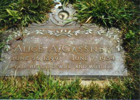 HALL GASSNER, ALICE ALVERNA - Muskingum County, Ohio | ALICE ALVERNA HALL GASSNER - Ohio Gravestone Photos