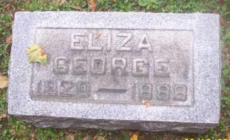 GEORGE, ELIZA - Muskingum County, Ohio | ELIZA GEORGE - Ohio Gravestone Photos