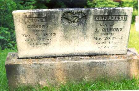 GIBBONS, ELIZABETH - Muskingum County, Ohio | ELIZABETH GIBBONS - Ohio Gravestone Photos