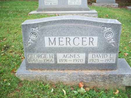 MERCER, AGNES - Muskingum County, Ohio | AGNES MERCER - Ohio Gravestone Photos