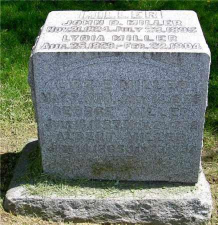 MILLER FAMILY, JOHN D. - Muskingum County, Ohio | JOHN D. MILLER FAMILY - Ohio Gravestone Photos