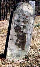 REDMAN, SUSANNA - Muskingum County, Ohio   SUSANNA REDMAN - Ohio Gravestone Photos