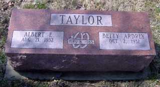 TAYLOR, ALBERT E - Muskingum County, Ohio | ALBERT E TAYLOR - Ohio Gravestone Photos