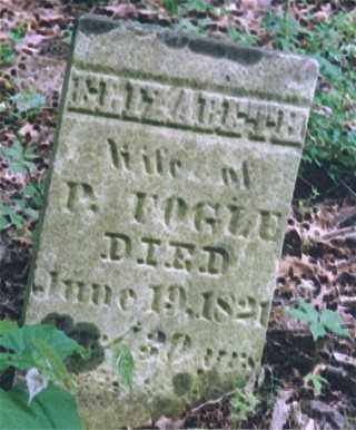 SALLIDAY FOGLE, ELIZABETH - Noble County, Ohio | ELIZABETH SALLIDAY FOGLE - Ohio Gravestone Photos