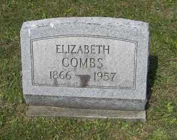 COMBS, ELIZABETH - Perry County, Ohio | ELIZABETH COMBS - Ohio Gravestone Photos