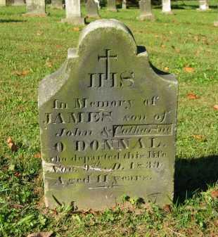 O'DONNAL, CATHARINE - Perry County, Ohio | CATHARINE O'DONNAL - Ohio Gravestone Photos