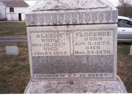 BEERY, FLORENCE - Pickaway County, Ohio   FLORENCE BEERY - Ohio Gravestone Photos