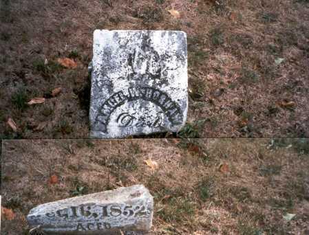HOSHAW, SAMUEL W. - Pickaway County, Ohio   SAMUEL W. HOSHAW - Ohio Gravestone Photos