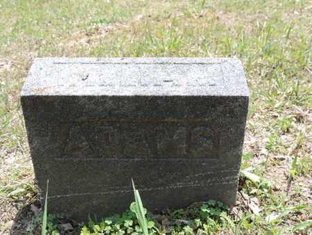 ADAM, WILLIAM - Pike County, Ohio | WILLIAM ADAM - Ohio Gravestone Photos