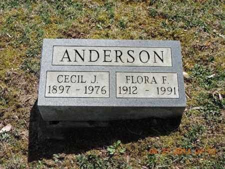 ANDERSON, CECIL J - Pike County, Ohio | CECIL J ANDERSON - Ohio Gravestone Photos