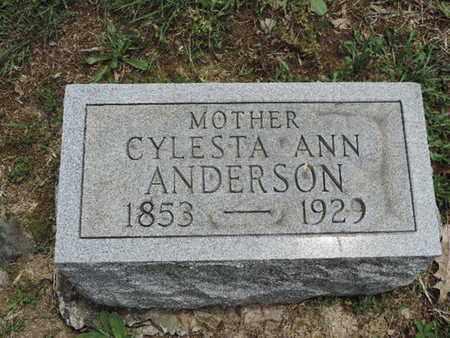 ANDERSON, CYLESTA ANN - Pike County, Ohio | CYLESTA ANN ANDERSON - Ohio Gravestone Photos