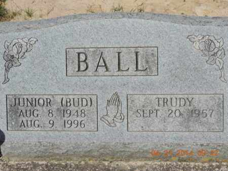 BALL, TRUDY - Pike County, Ohio | TRUDY BALL - Ohio Gravestone Photos