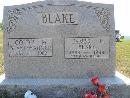 BLAKE, JAMES P. - Pike County, Ohio   JAMES P. BLAKE - Ohio Gravestone Photos