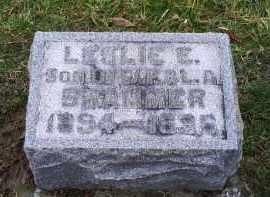 BRAMMER, LESLIE E. - Pike County, Ohio | LESLIE E. BRAMMER - Ohio Gravestone Photos