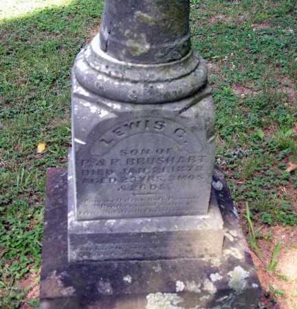 BRUSHART, LEWIS C. - Pike County, Ohio | LEWIS C. BRUSHART - Ohio Gravestone Photos