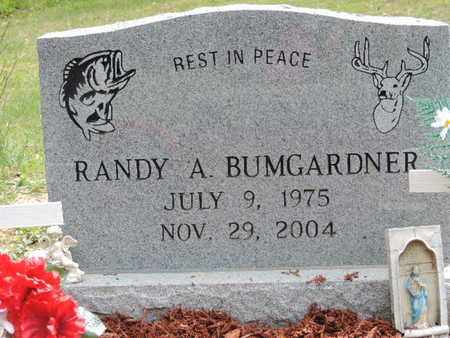 BUMGARDNER, RANDY A. - Pike County, Ohio | RANDY A. BUMGARDNER - Ohio Gravestone Photos