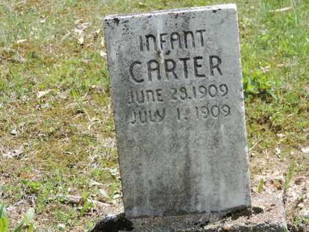 CARTER, INFANT - Pike County, Ohio   INFANT CARTER - Ohio Gravestone Photos