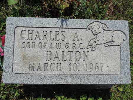 DALTON, CHARLES A. - Pike County, Ohio | CHARLES A. DALTON - Ohio Gravestone Photos
