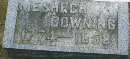 DOWNING, MESHECH - Pike County, Ohio | MESHECH DOWNING - Ohio Gravestone Photos