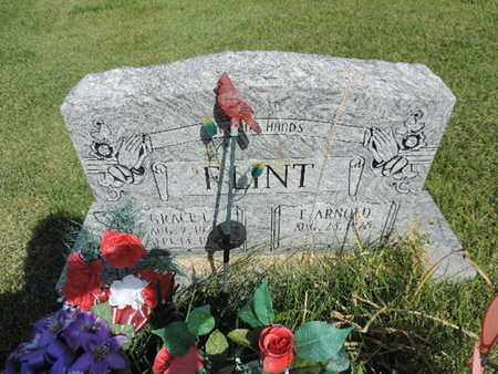 FLINT, F. ARNOLD - Pike County, Ohio | F. ARNOLD FLINT - Ohio Gravestone Photos