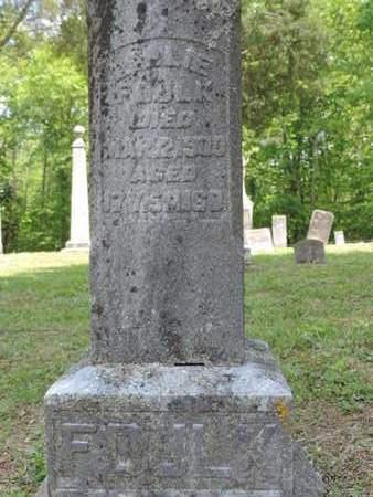 FOULK, E  LIE - Pike County, Ohio | E  LIE FOULK - Ohio Gravestone Photos