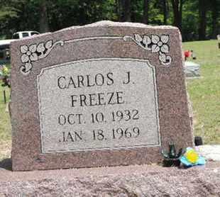 FREEZE, CARLOS J. - Pike County, Ohio   CARLOS J. FREEZE - Ohio Gravestone Photos