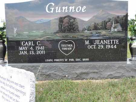 GUNNOE, M. JEANETTE - Pike County, Ohio | M. JEANETTE GUNNOE - Ohio Gravestone Photos