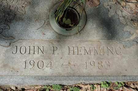 HEMMING, JOHN P. - Pike County, Ohio | JOHN P. HEMMING - Ohio Gravestone Photos