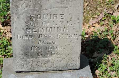 HEMMING, SQUIRE - Pike County, Ohio | SQUIRE HEMMING - Ohio Gravestone Photos