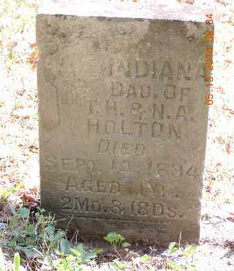 HOLTON, INDIANA - Pike County, Ohio | INDIANA HOLTON - Ohio Gravestone Photos